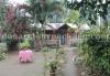 Dalgaon homestay