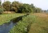 Stream around Rajabhatkhawa homestay
