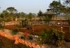 Rajabhatkhawa homestay garden